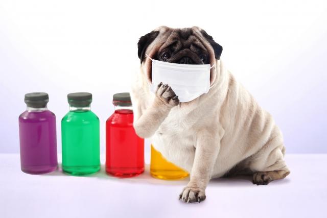 睡眠、睡眠障害、花粉症。花粉症と不眠がさらにその症状を悪化させてしまいます。